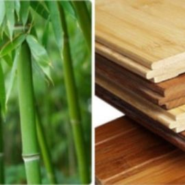Bambus parketi